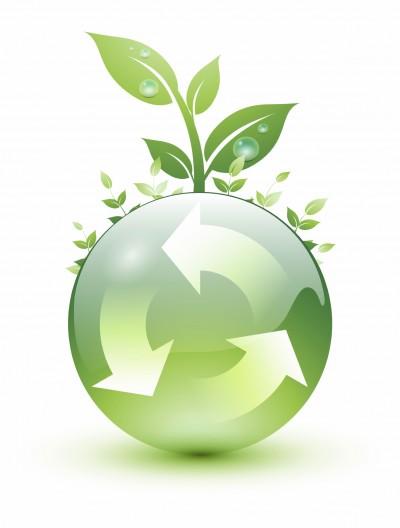 Novo estudo aponta que consumidores preferem empresas reconhecidas por preservarem o meio ambiente